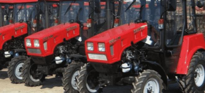 Линейка культовых тракторов «Беларус» – характеристики и возможности
