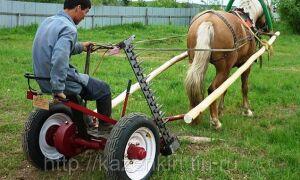 Сенокосилка конная. Особенности оборудования
