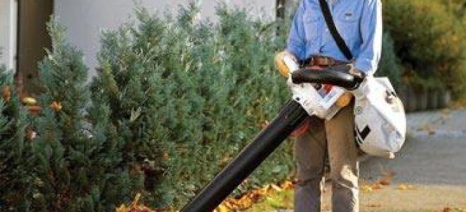 Садовые пылесосы и воздуходувки. Виды и особенности