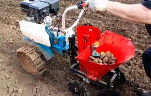 Как мотоблоком сажать картофель?